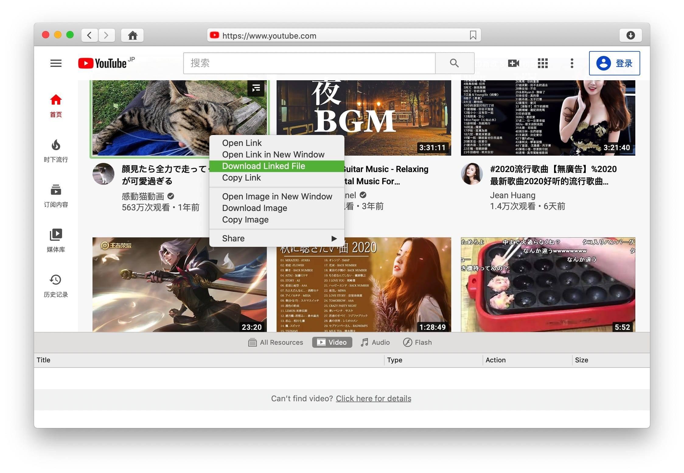 VideoDuke 1.13 (287) 破解版 很棒的视频下载工具 上传下载 第2张